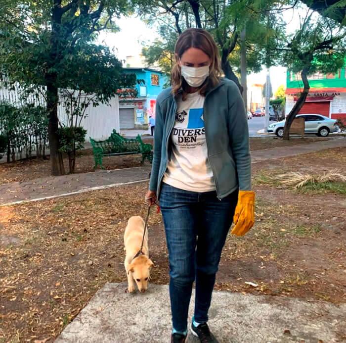 Mascotas Coyoacán perro abandonado niño carta